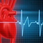 I battiti cardiaci: come variano durante il giorno