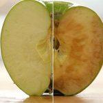 Mela ossidata: fa male mangiarla?
