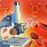 Quali sono i valori normali degli esami del sangue?
